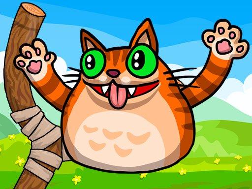 Ljutita mačka