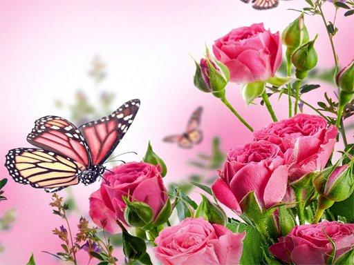 Leptiri slagalica
