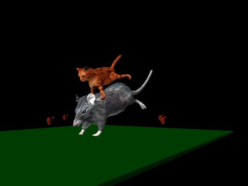 mačka parkour