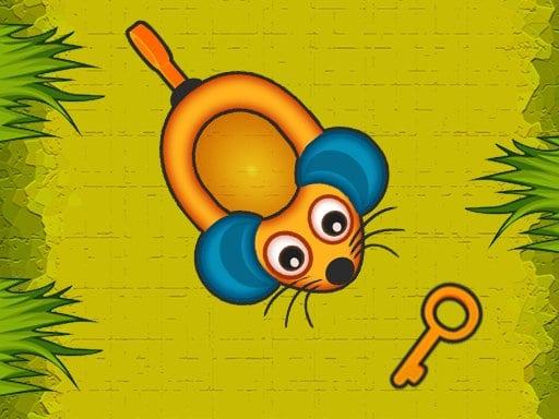 Kolekcionarski miš